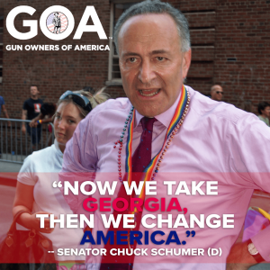 "Chuck Schumer: ""Now we take Georgia, then we change America"""
